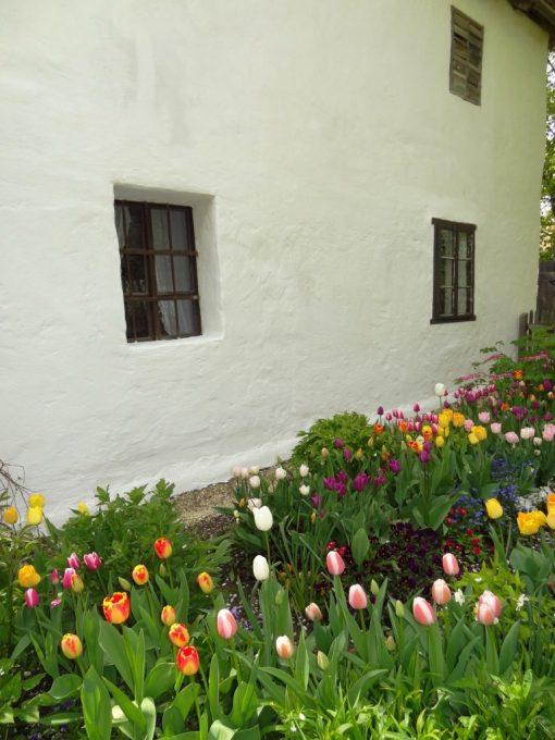 Frühlingsbeginn im Museumsdorf....